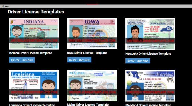 How to Buy a Driver License Template For Your Needs